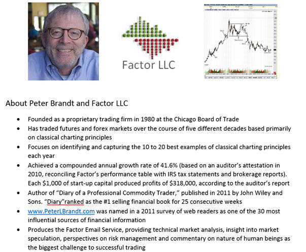 About Peter Brandt and Factor LLC
